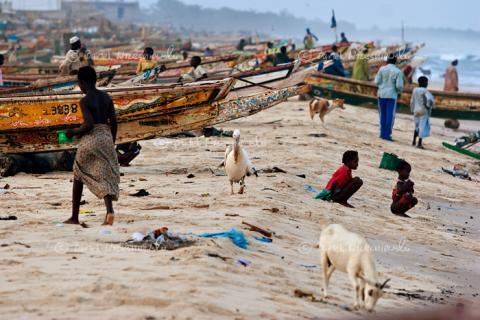 senegal-africa.jpg